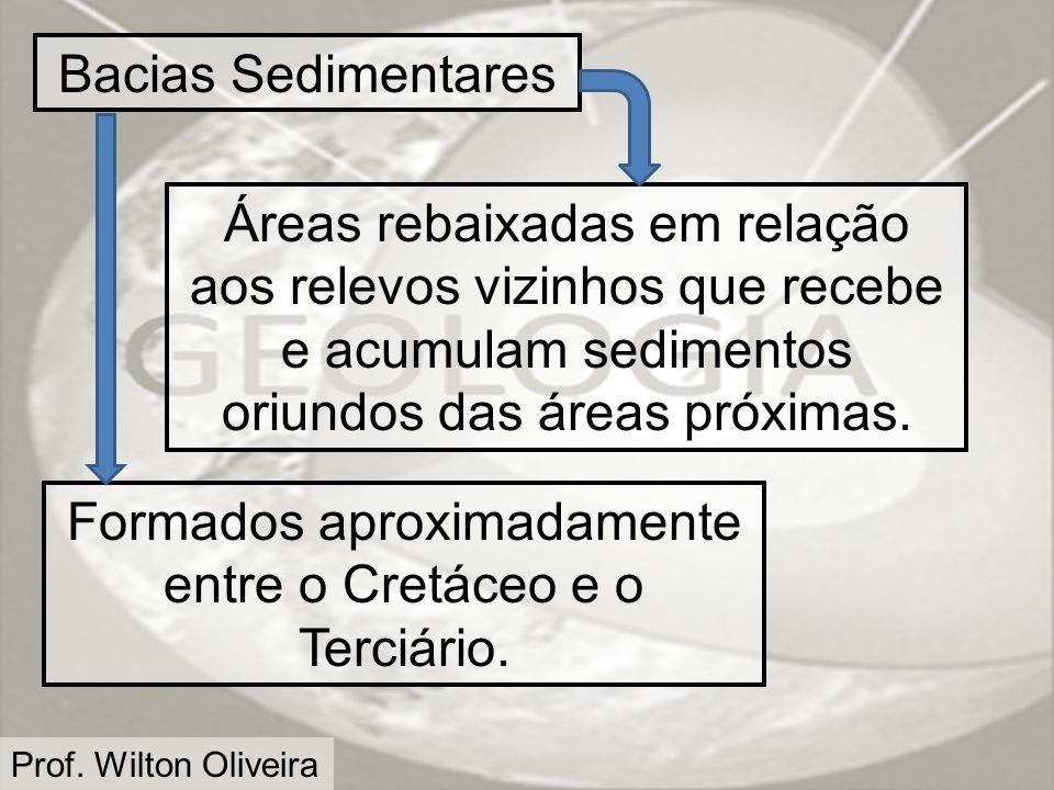 Prof. Wilton Oliveira Bacias Sedimentares Áreas rebaixadas em relação aos relevos vizinhos que recebe e acumulam sedimentos oriundos das áreas próxima