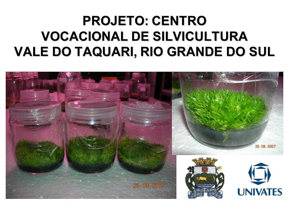 PROPONENTE NOME: Prefeitura Municipal de Lajeado PREFEITA: Carmen R.