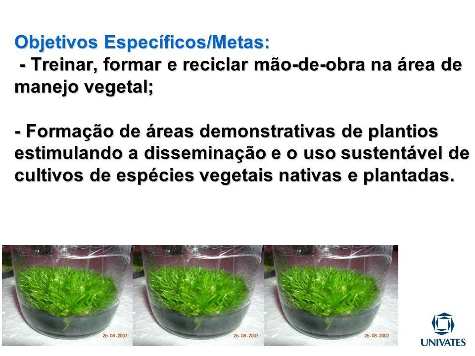 Objetivos Específicos/Metas: - Treinar, formar e reciclar mão-de-obra na área de manejo vegetal; - Formação de áreas demonstrativas de plantios estimu