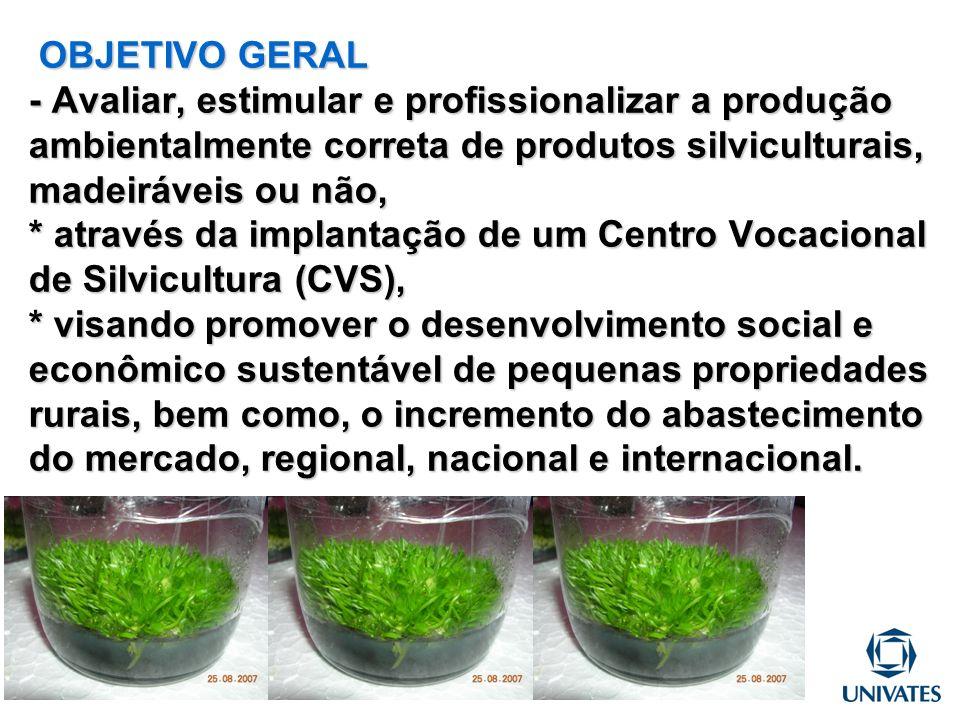 OBJETIVO GERAL - Avaliar, estimular e profissionalizar a produção ambientalmente correta de produtos silviculturais, madeiráveis ou não, * através da