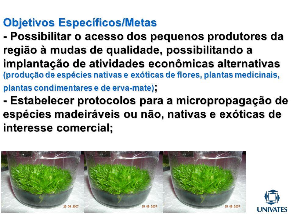 Objetivos Específicos/Metas - Possibilitar o acesso dos pequenos produtores da região à mudas de qualidade, possibilitando a implantação de atividades
