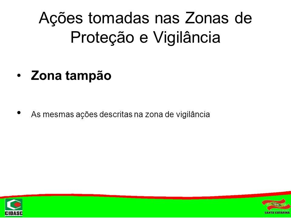 Meios Utilizados Palestra nas escolas Situação de Emergência Sinais clínicos Impacto sócio-econômico Prevenção Recomendações