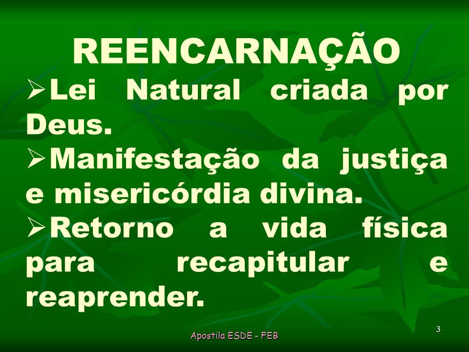 Apostila ESDE - FEB 3 REENCARNAÇÃO Lei Natural criada por Deus.