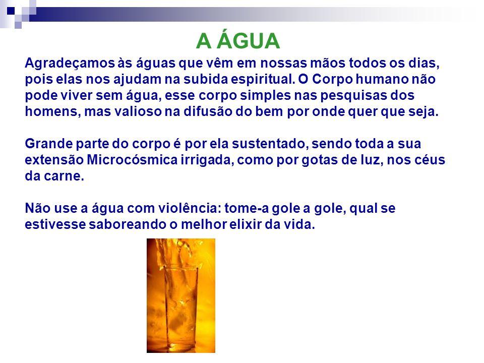 Agradeçamos às águas que vêm em nossas mãos todos os dias, pois elas nos ajudam na subida espiritual. O Corpo humano não pode viver sem água, esse cor