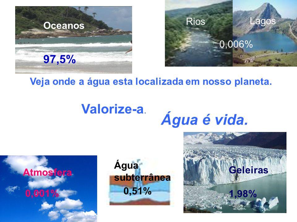 Atmosfera 0,001% Água subterrânea 0,51% Rios Lagos 0,006% Água é vida. Valorize-a. Veja onde a água esta localizada em nosso planeta. Geleiras 1,98% O