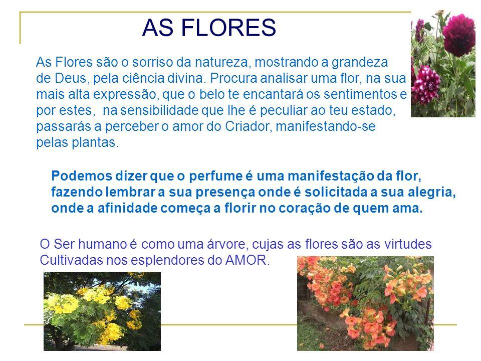 AS FLORES As Flores são o sorriso da natureza, mostrando a grandeza de Deus, pela ciência divina. Procura analisar uma flor, na sua mais alta expressã