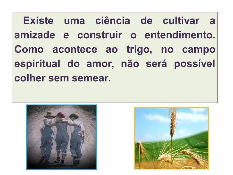 Existe uma ciência de cultivar a amizade e construir o entendimento. Como acontece ao trigo, no campo espiritual do amor, não será possível colher sem