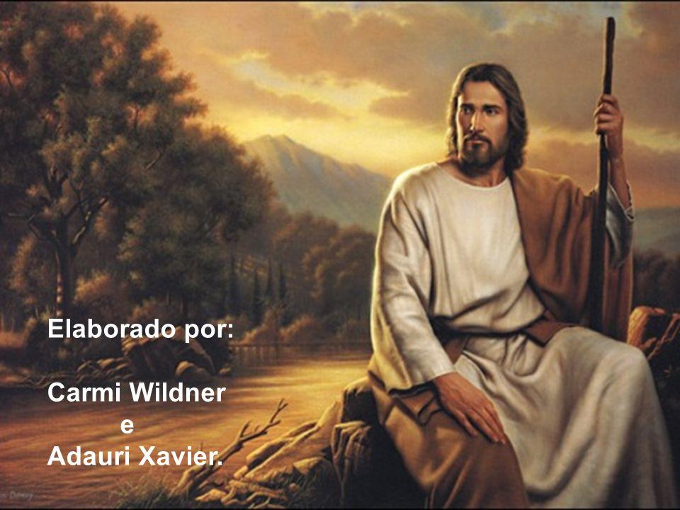 Elaborado por: Carmi Wildner e Adauri Xavier.