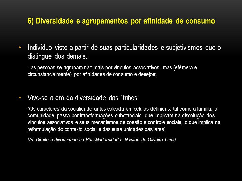 6) Diversidade e agrupamentos por afinidade de consumo Indivíduo visto a partir de suas particularidades e subjetivismos que o distingue dos demais. -