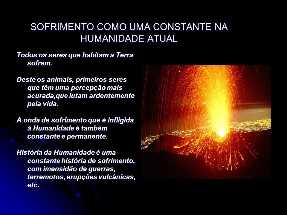 SOFRIMENTO COMO UMA CONSTANTE NA HUMANIDADE ATUAL Todos os seres que habitam a Terra sofrem. Deste os animais, primeiros seres que têm uma percepção m