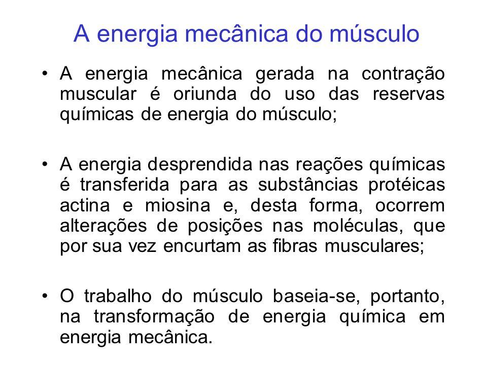 A energia mecânica do músculo A energia mecânica gerada na contração muscular é oriunda do uso das reservas químicas de energia do músculo; A energia