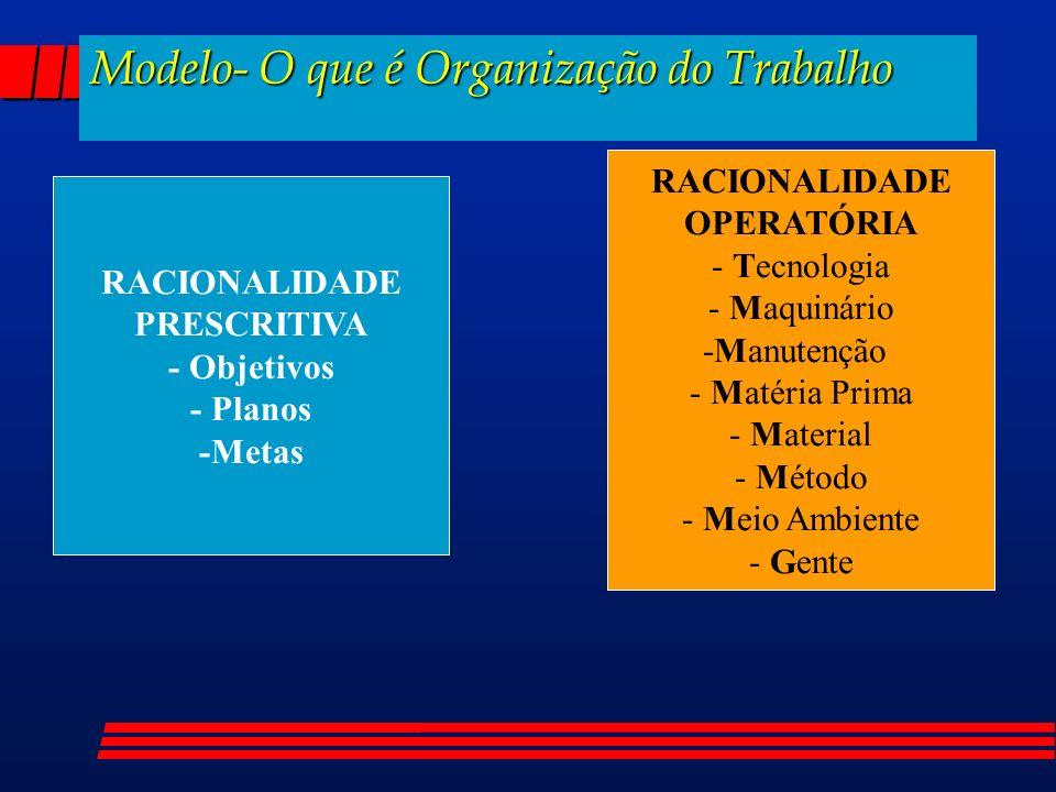 hudson@ergoltda.com.br Tel: 0 (xx) 31- 3261-3736 Obrigado pela atenção,