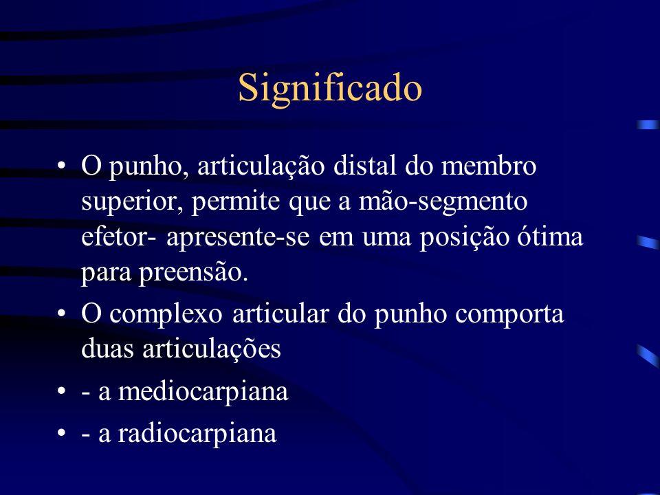 Antero- posterior Adução Abdução Definição dos movimentos de punho