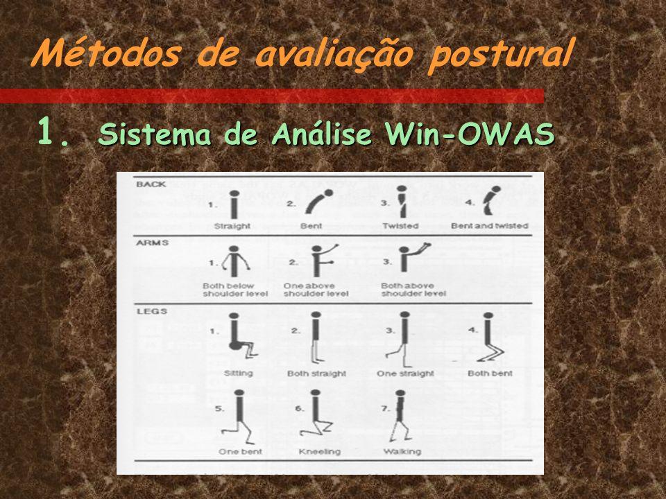 Sistema de Análise Win-OWAS 1. Sistema de Análise Win-OWAS