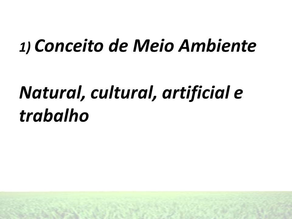1) Conceito de Meio Ambiente Natural, cultural, artificial e trabalho