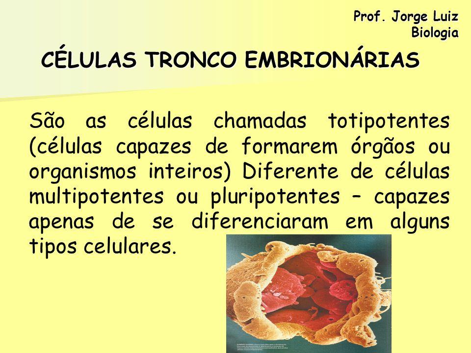 CÉLULAS TRONCO EMBRIONÁRIAS São as células chamadas totipotentes (células capazes de formarem órgãos ou organismos inteiros) Diferente de células mult