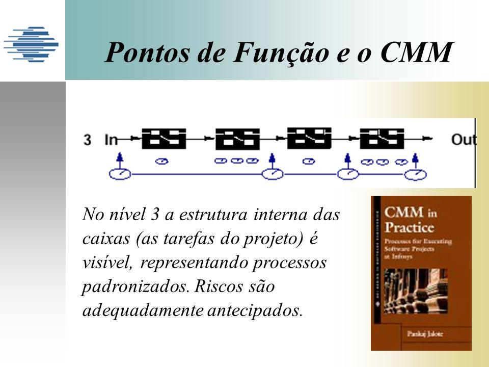Pontos de Função e o CMM No nível 3 a estrutura interna das caixas (as tarefas do projeto) é visível, representando processos padronizados.