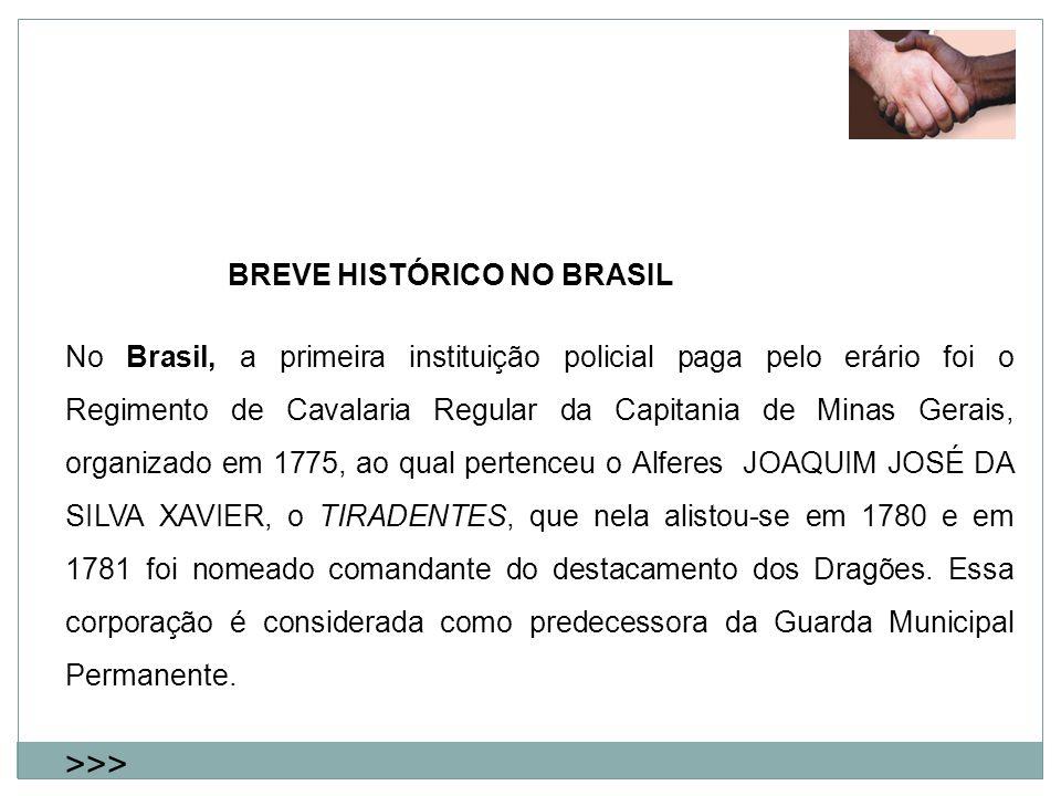 BREVE HISTÓRICO NO BRASIL No Brasil, a primeira instituição policial paga pelo erário foi o Regimento de Cavalaria Regular da Capitania de Minas Gerai
