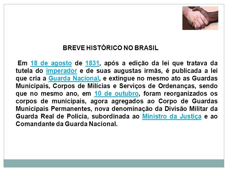 BREVE HISTÓRICO NO BRASIL Em 18 de agosto de 1831, após a edição da lei que tratava da tutela do imperador e de suas augustas irmãs, é publicada a lei