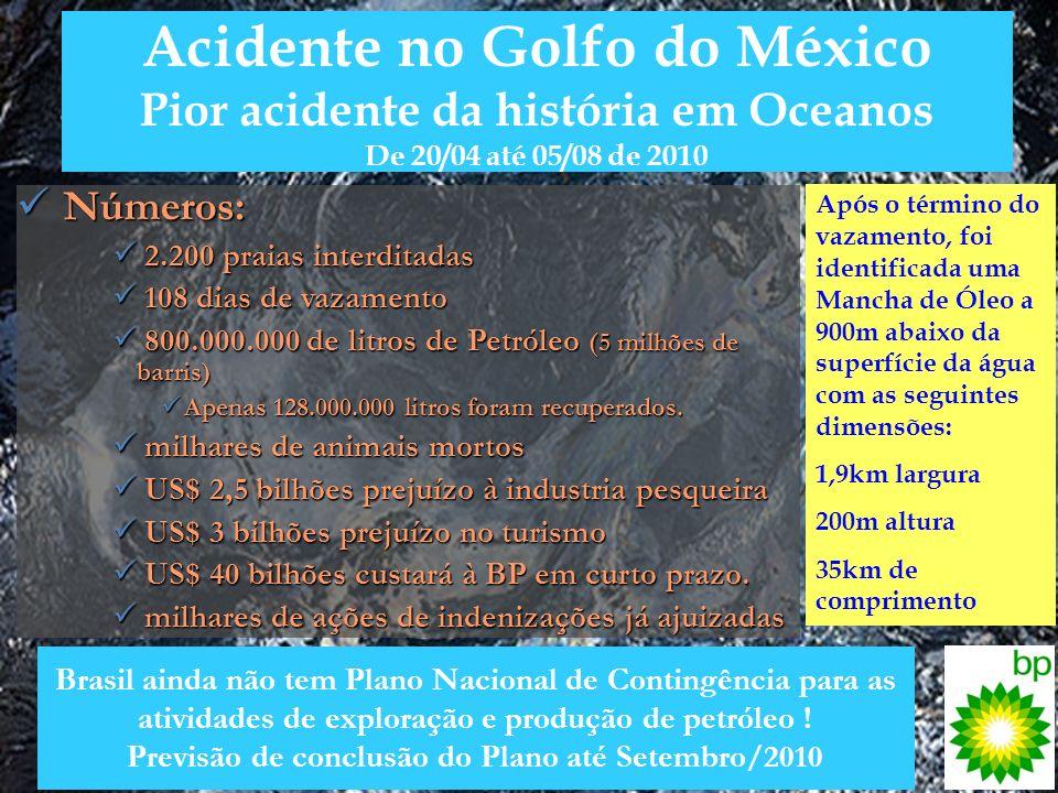 Acidente no Golfo do México Pior acidente da história em Oceanos De 20/04 até 05/08 de 2010 Números: Números: 2.200 praias interditadas 2.200 praias i