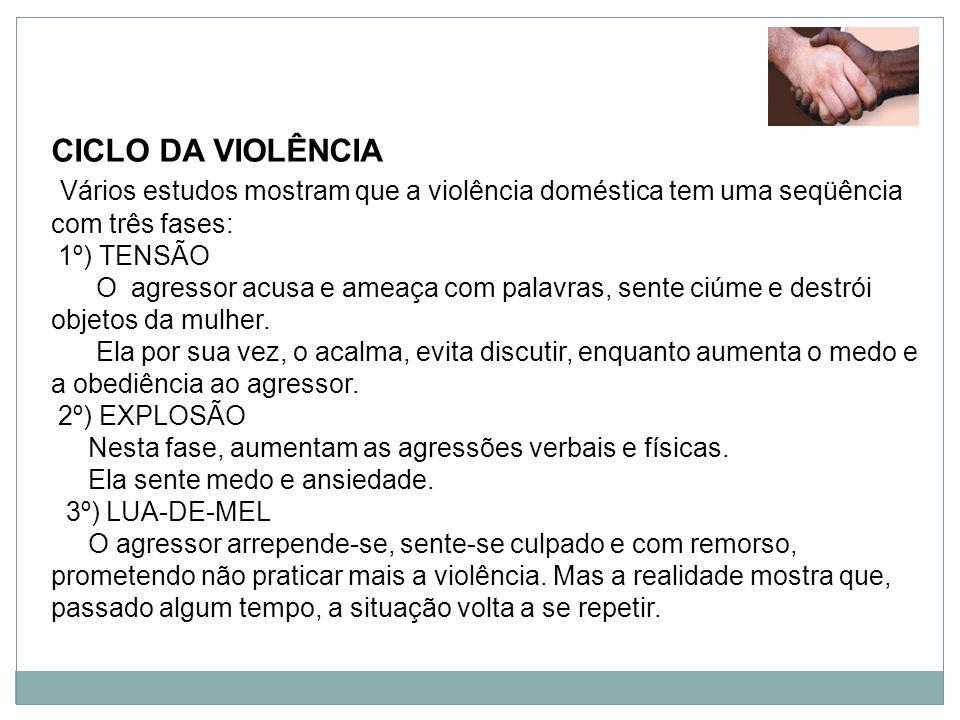 CICLO DA VIOLÊNCIA Vários estudos mostram que a violência doméstica tem uma seqüência com três fases: 1º) TENSÃO O agressor acusa e ameaça com palavra