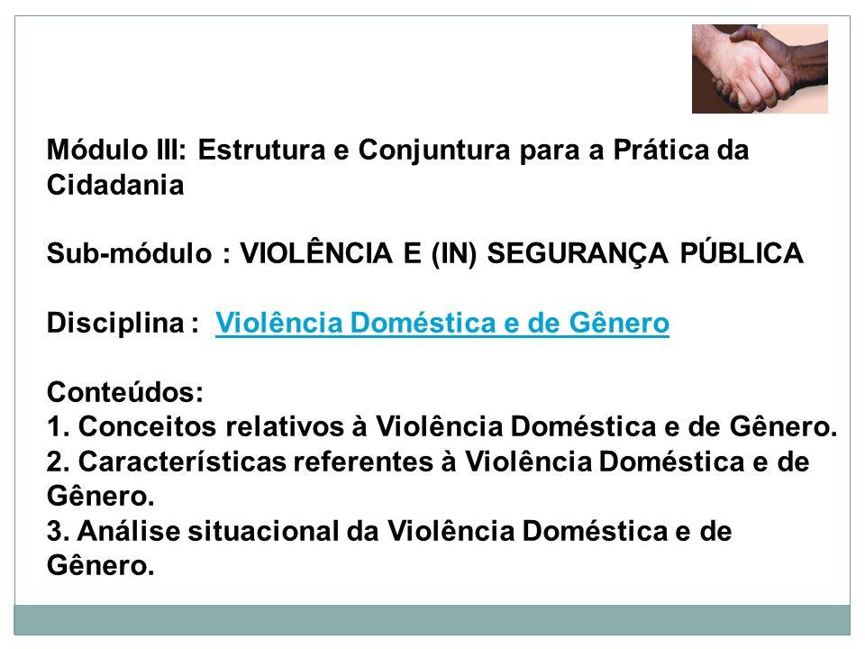 Módulo III: Estrutura e Conjuntura para a Prática da Cidadania Sub-módulo : VIOLÊNCIA E (IN) SEGURANÇA PÚBLICA Disciplina : Violência Doméstica e de G