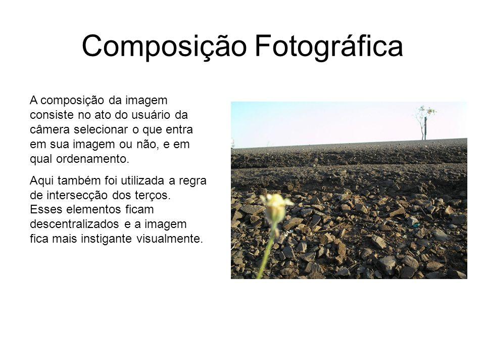 Composição Fotográfica A composição da imagem consiste no ato do usuário da câmera selecionar o que entra em sua imagem ou não, e em qual ordenamento.