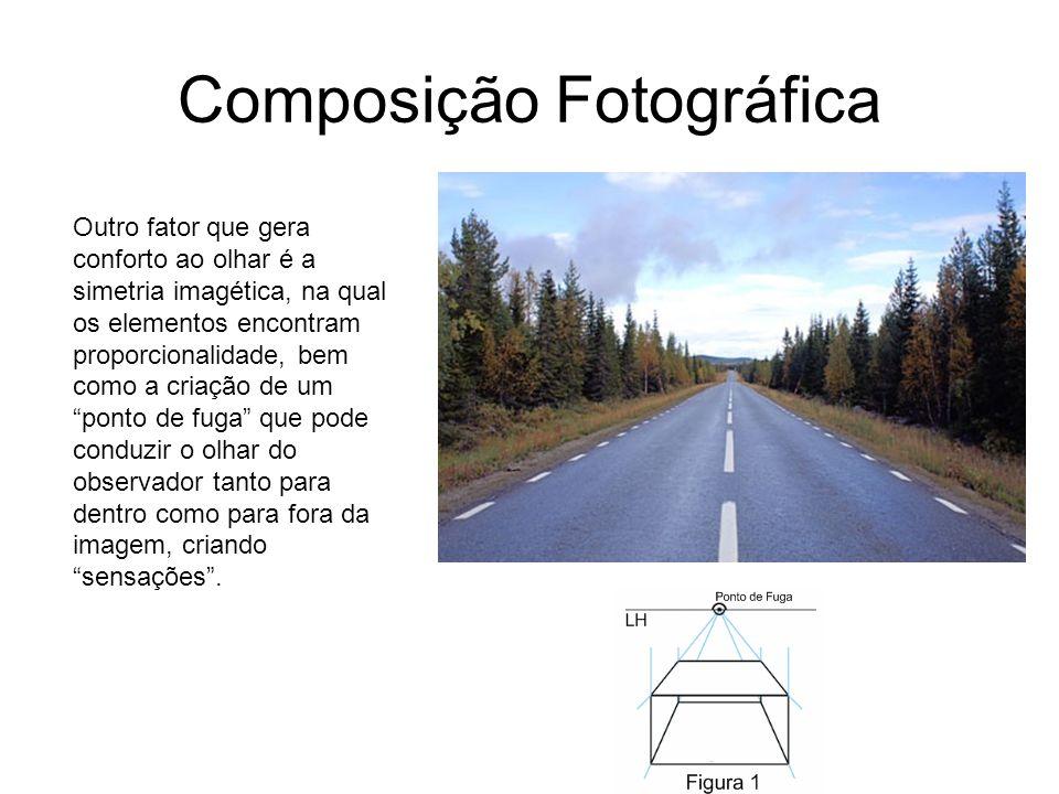 Composição Fotográfica Outro fator que gera conforto ao olhar é a simetria imagética, na qual os elementos encontram proporcionalidade, bem como a cri