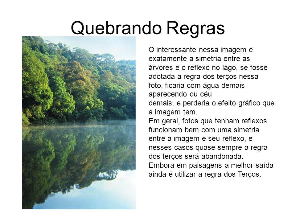 Quebrando Regras O interessante nessa imagem é exatamente a simetria entre as árvores e o reflexo no lago, se fosse adotada a regra dos terços nessa f