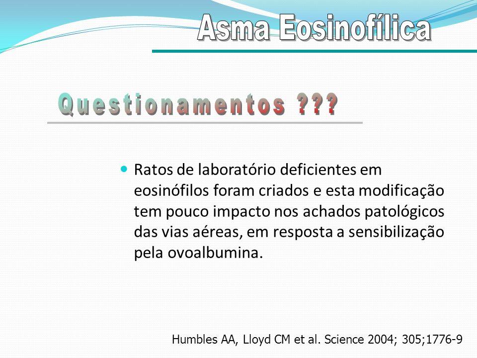 Ratos de laboratório deficientes em eosinófilos foram criados e esta modificação tem pouco impacto nos achados patológicos das vias aéreas, em respost