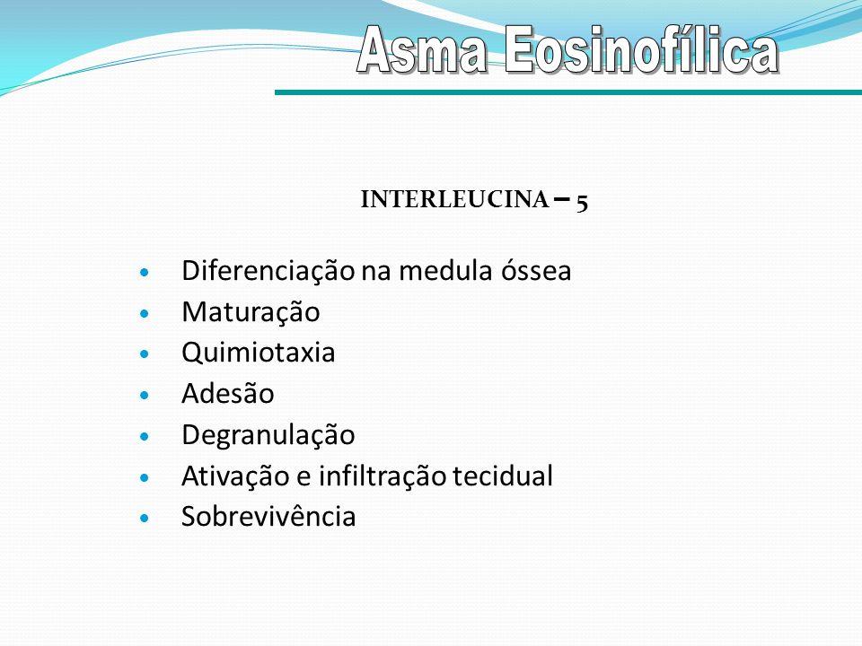 INTERLEUCINA – 5 Diferenciação na medula óssea Maturação Quimiotaxia Adesão Degranulação Ativação e infiltração tecidual Sobrevivência