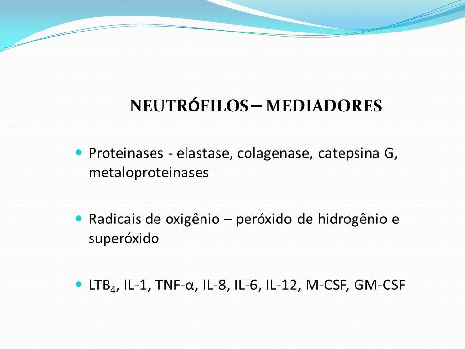NEUTRÓFILOS – MEDIADORES Proteinases - elastase, colagenase, catepsina G, metaloproteinases Radicais de oxigênio – peróxido de hidrogênio e superóxido