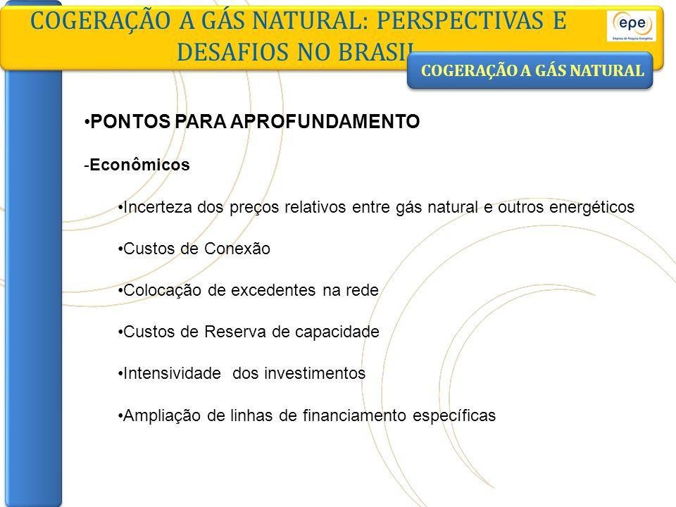 PONTOS PARA APROFUNDAMENTO -Econômicos Incerteza dos preços relativos entre gás natural e outros energéticos Custos de Conexão Colocação de excedentes