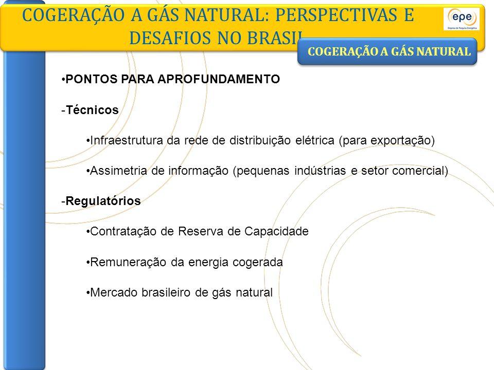 PONTOS PARA APROFUNDAMENTO -Técnicos Infraestrutura da rede de distribuição elétrica (para exportação) Assimetria de informação (pequenas indústrias e