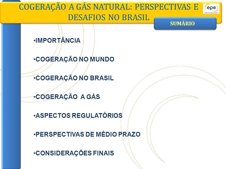 CONSIDERAÇÕES FINAIS COGERAÇÃO A GÁS NATURAL: PERSPECTIVAS E DESAFIOS NO BRASIL MERCADO DE GÁS NATURAL: DESAFIOS Mercado de gás para cogeração tem elevado potencial de crescimento no Brasil Em usuários industriais (maior potencial) No setor comercial, atendendo demandas de trigeração Cogeração como alternativa de uso eficiente do gás natural Mercado pulverizado, mas firme (consumo vinculado aos fatores de carga do setor produtivo)