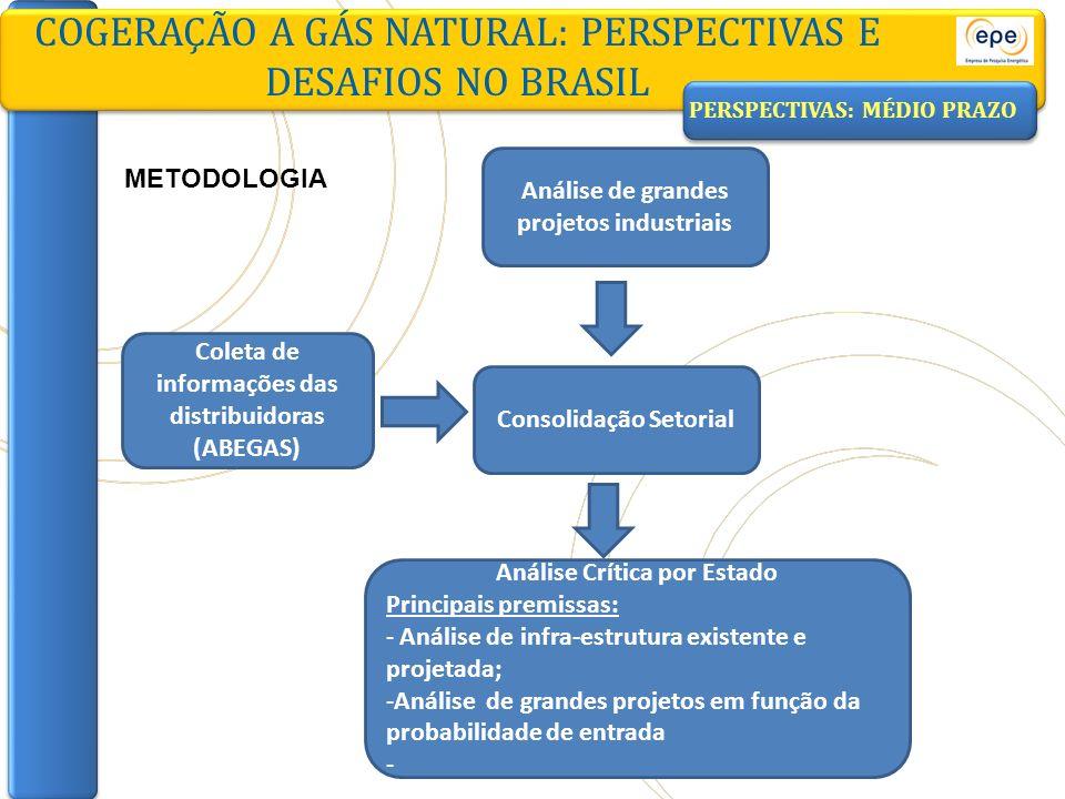 COGERAÇÃO A GÁS NATURAL: PERSPECTIVAS E DESAFIOS NO BRASIL Coleta de informações das distribuidoras (ABEGAS) Consolidação Setorial Análise Crítica por