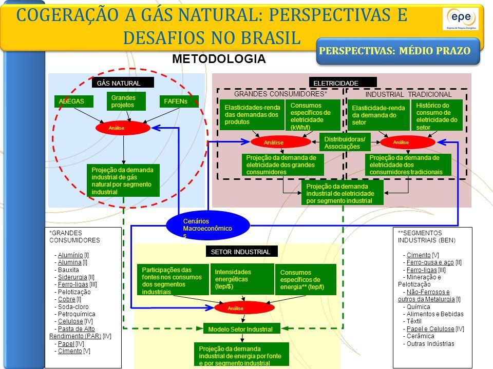 COGERAÇÃO A GÁS NATURAL: PERSPECTIVAS E DESAFIOS NO BRASIL ABEGASFAFENs Análise Projeção da demanda industrial de gás natural por segmento industrial