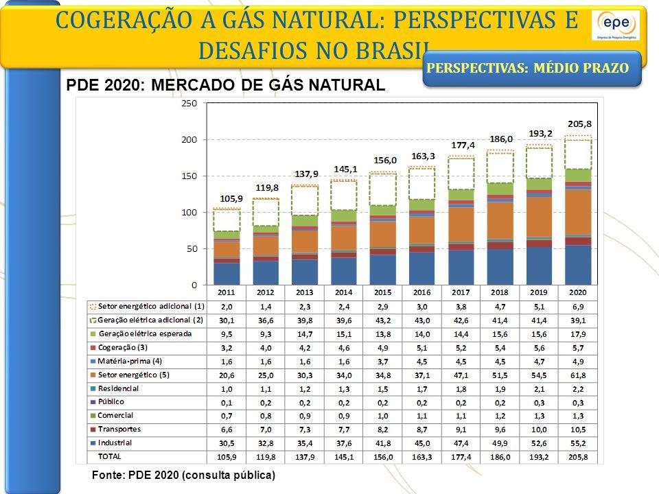 COGERAÇÃO A GÁS NATURAL: PERSPECTIVAS E DESAFIOS NO BRASIL Fonte: PDE 2020 (consulta pública) PERSPECTIVAS: MÉDIO PRAZO PDE 2020: MERCADO DE GÁS NATUR