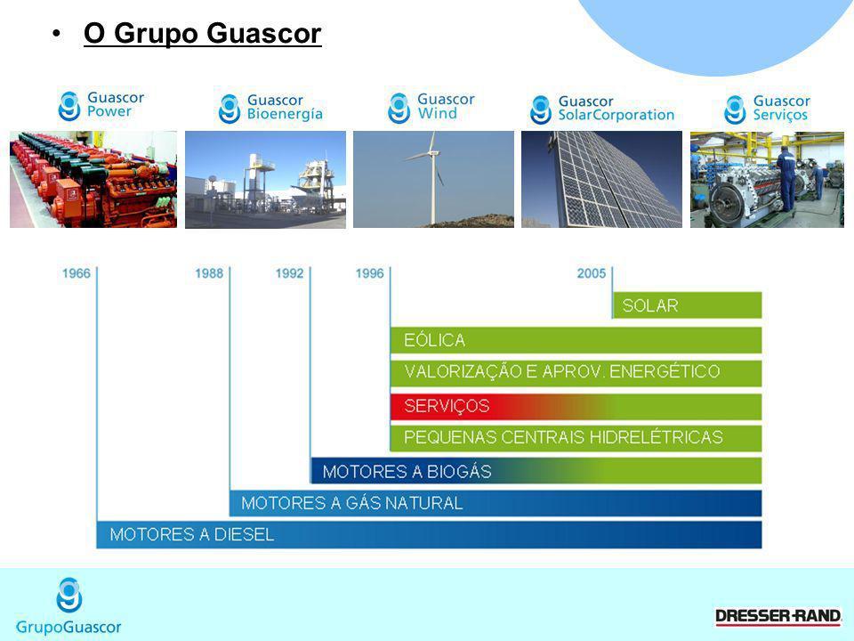Pós Venda 8 Centros de Distribuição no Brasil Engenharia de Manutenção Atendimento em 24hs ou 48hs Peças em estoque Contratos de Manutenção (Customizavel) Operador Mantenedor (Treinamento Guascor)
