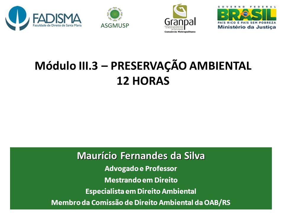 Módulo III.3 – PRESERVAÇÃO AMBIENTAL 12 HORAS Maurício Fernandes da Silva Advogado e Professor Mestrando em Direito Especialista em Direito Ambiental