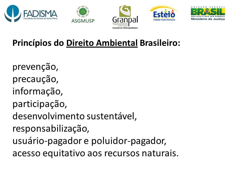 Princípios do Direito Ambiental Brasileiro: p revenção, precaução, informação, participação, desenvolvimento sustentável, responsabilização, usuário-p