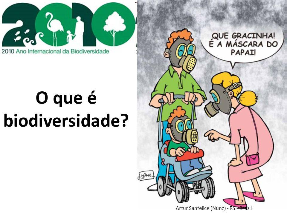 O que é biodiversidade? Artur Sanfelice (Nunz) - RS - Brasil