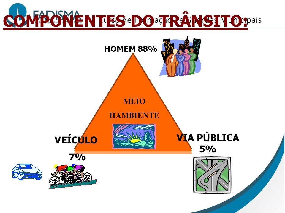 COMPONENTES DO TRÂNSITO: VEÍCULO 7% VIA PÚBLICA 5% HOMEM 88% MEIO HAMBIENTE
