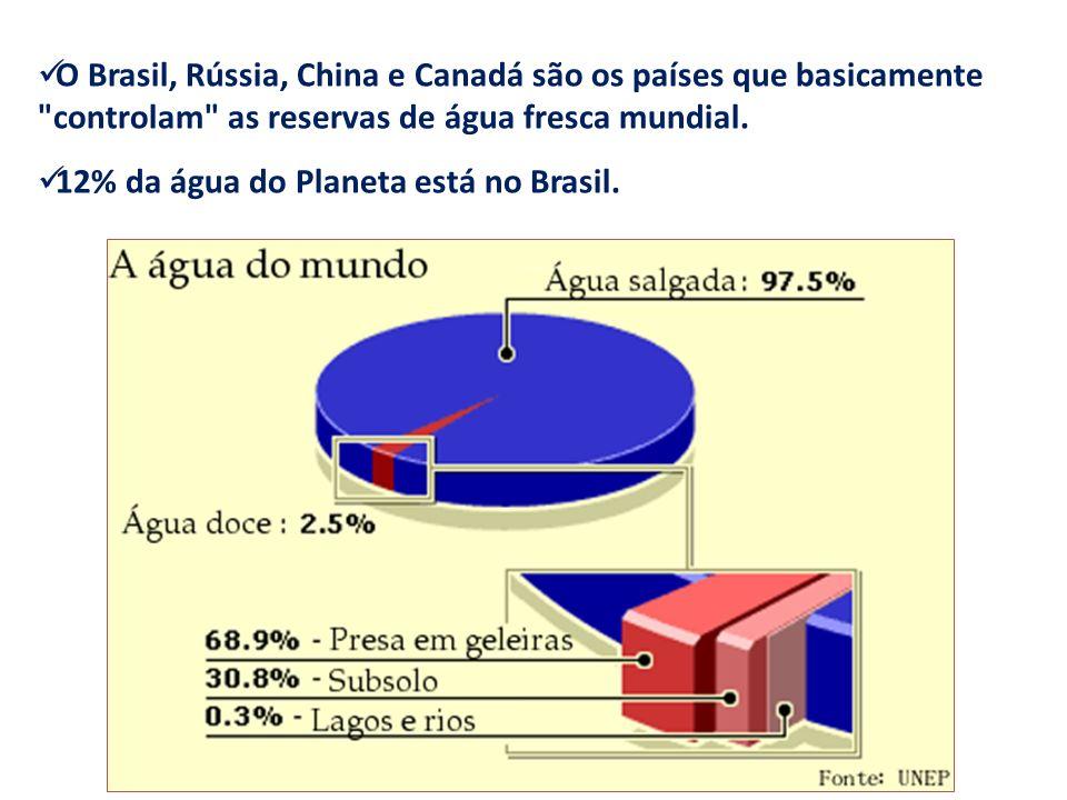 O Brasil, Rússia, China e Canadá são os países que basicamente