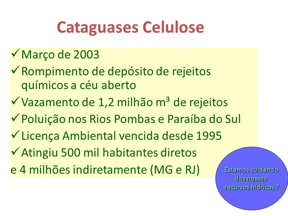 Cataguases Celulose Março de 2003 Rompimento de depósito de rejeitos químicos a céu aberto Vazamento de 1,2 milhão m³ de rejeitos Poluição nos Rios Po