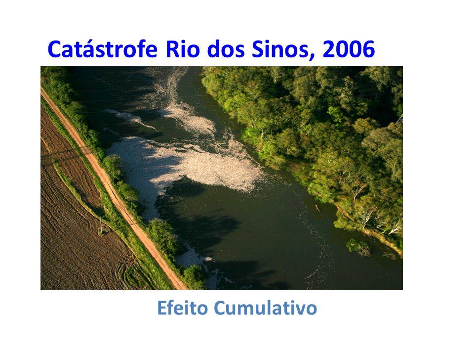 Catástrofe Rio dos Sinos, 2006 Efeito Cumulativo