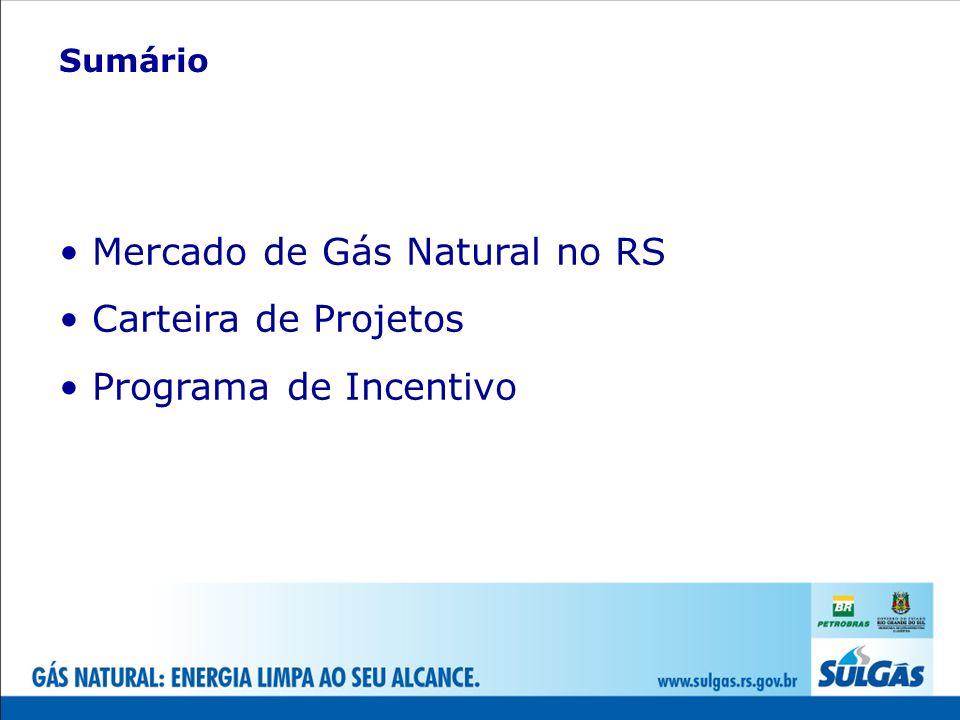 Demanda ~ 60.000 m³/dia Investimento ~ R$ 38 milhões Extensão ~ 51km Projetos Linha Tronco – Minas do Leão