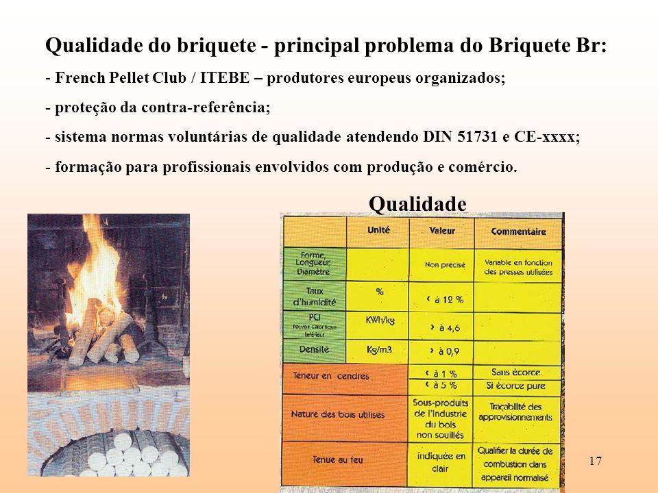 17 Qualidade do briquete - principal problema do Briquete Br: - French Pellet Club / ITEBE – produtores europeus organizados; - proteção da contra-ref