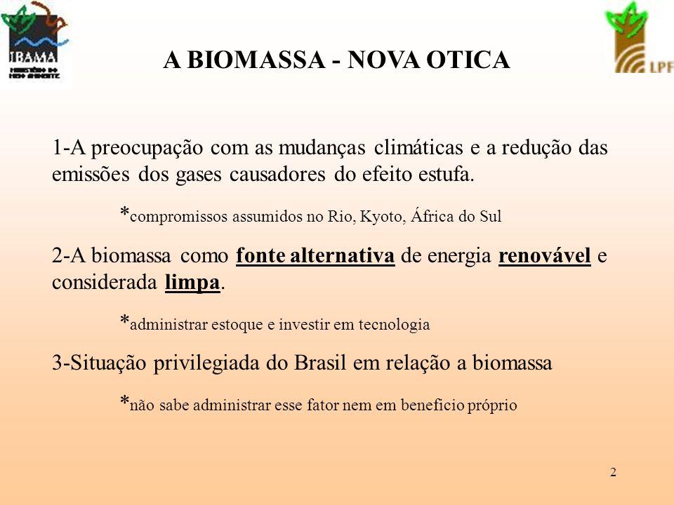 3 Perspectivas da biomassa no Brasil 1-possibilidades de ampliar oferta interna no Brasil de energia renovável e limpa; 2-possibilidade de resolver problemas de lenha na Região Nordeste; 3-necessidade de valorizar os resíduos no Brasil; 4-possibilidade de atender demanda externa de energia renovável.
