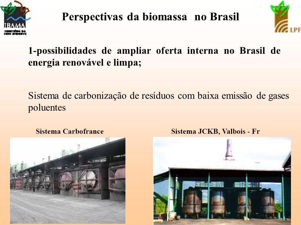4 Perspectivas da biomassa no Brasil 1-possibilidades de ampliar oferta interna no Brasil de energia renovável e limpa; Sistema de carbonização de res